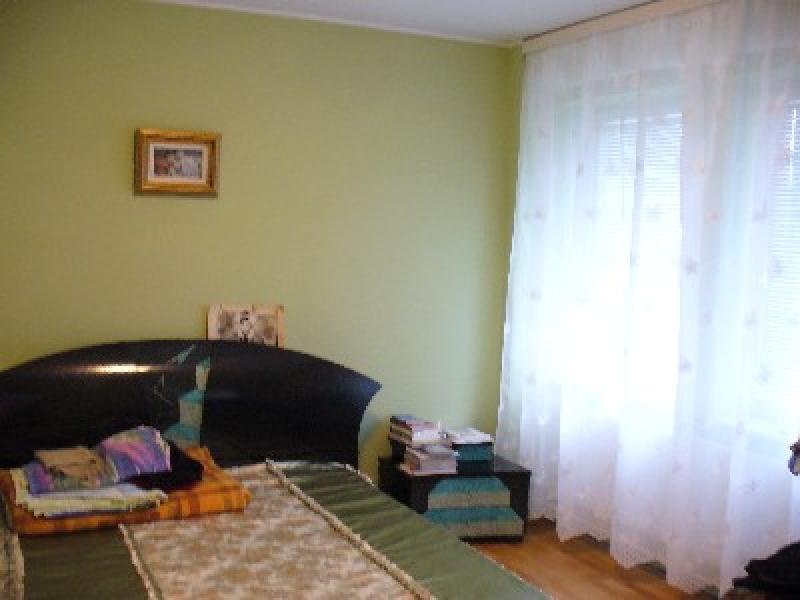 Vila 5 camere, zona Bd. Mihai Eminescu-1366-4