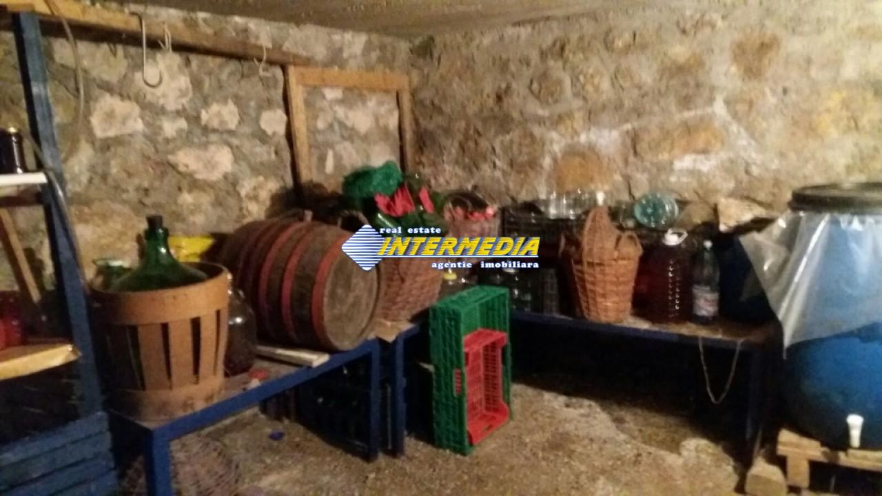 Vila de vanzare in Centru 6 camere 3 garaje-29003-15