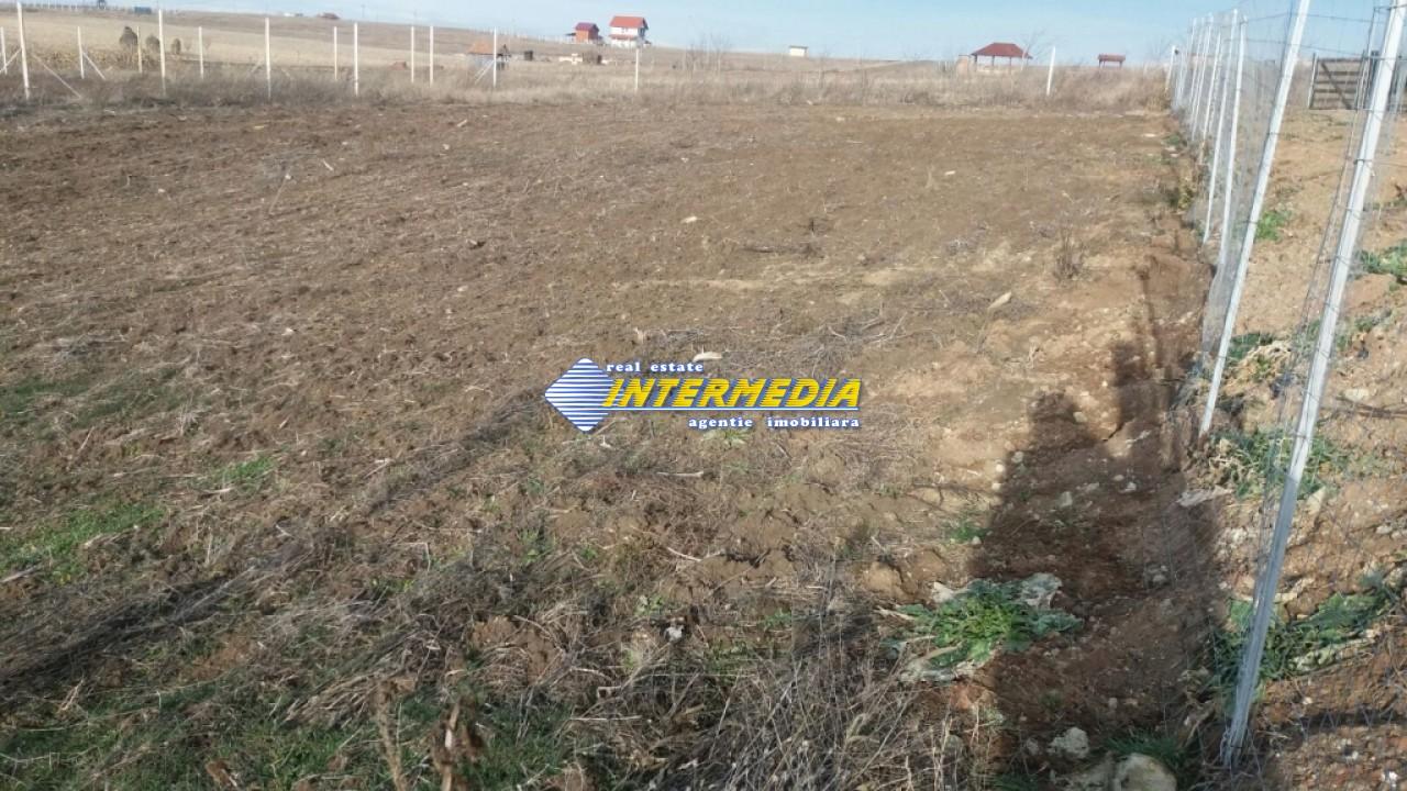 Teren intravilan de vanzare in zona Oarda Alba iulia-24552-4