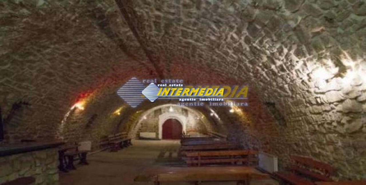 Vila de vanzare Alba, zona IGHIU-16468-2
